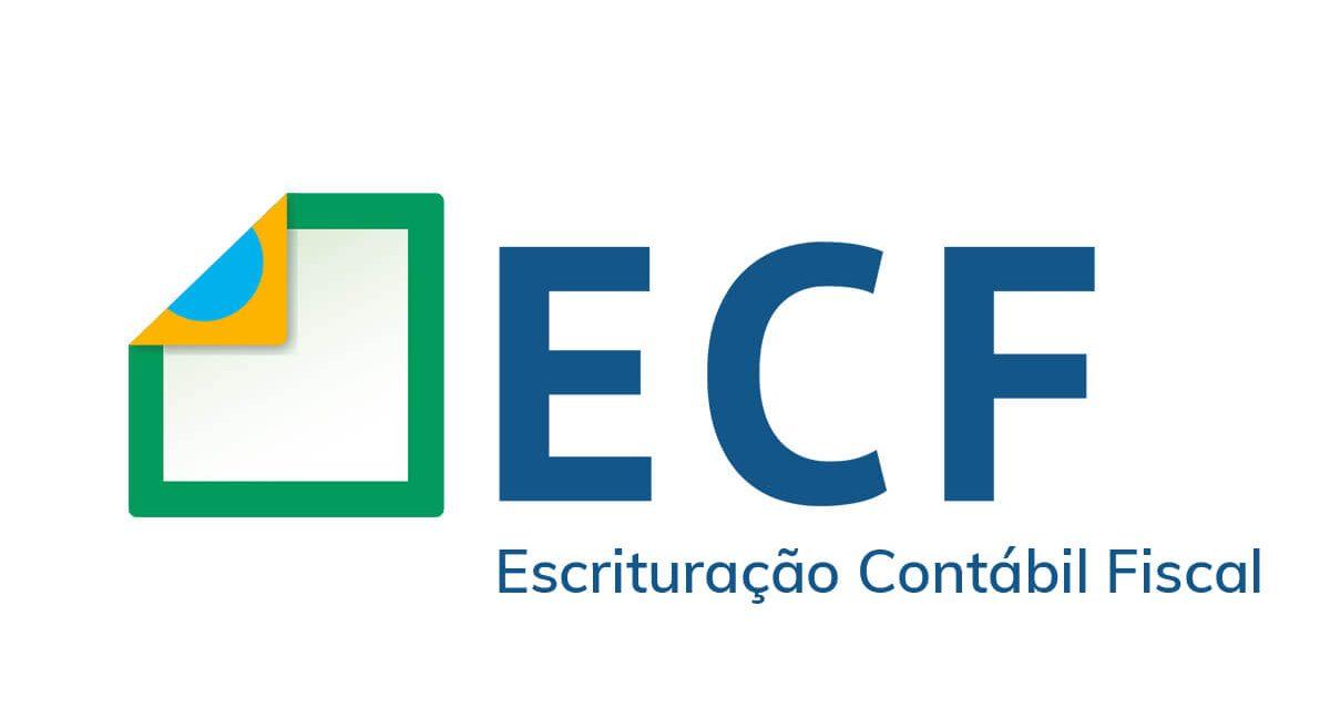 ECF 2020  – O que é? Obrigatoriedade, prazo para entrega, multas e muito mais!