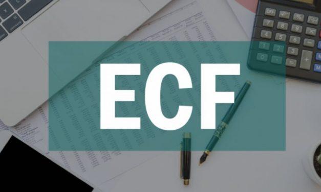 ECF – Quais são os principais erros que impedem a validação? Como ajustá-los?